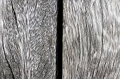 Wooden Plank Texture Detail Close-up