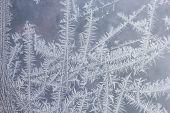 Feathery frost pattern - ice flowers on window glass