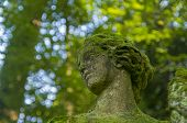 Fragment Of Old Statues - Moss-covered Woman's Head