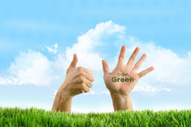 foto of environmentally friendly  - Hands with eco friendly sign in the grass - JPG