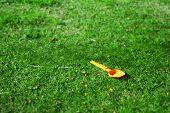 picture of tilt  - orange spade in a green field - JPG