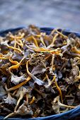 stock photo of stall  - Close up of mushrooms on a market stall - JPG
