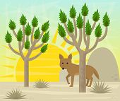 stock photo of coyote  - Cartoon coyote is standing behind a Joshua tree in the desert - JPG
