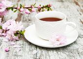 Постер, плакат: Cup Of Tea And Sakura Blossom