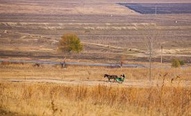 picture of carriage horse  - Horse drawn carriage on the country road from Stanca village Iasi Romania - JPG