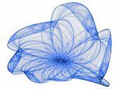 Duotone Flower