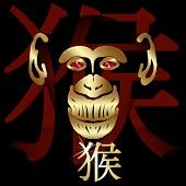 Постер, плакат: Monkey Symbol Of The Year A Figure With Shading