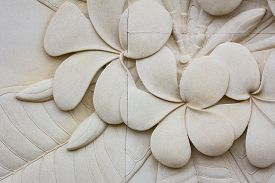 stock photo of carving  - closeup Plumeria carved stone - JPG