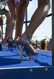 picture of transgendered  - Gay Lesbian Pride Parade - JPG