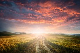pic of dirt road  - sunet over dirt road - JPG