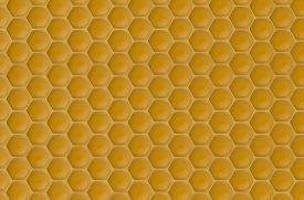 foto of honeycomb  - Yellow Honeycomb background or honeycomb cells texture - JPG