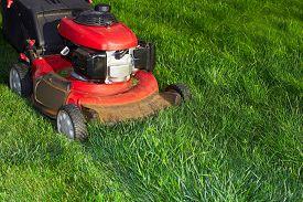stock photo of grass-cutter  - Lawn mower cutting green grass - JPG