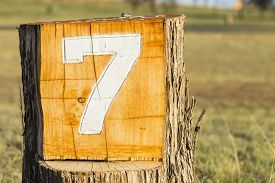 picture of number 7  - Number seven 7 routed sign on tree log for golf hole - JPG