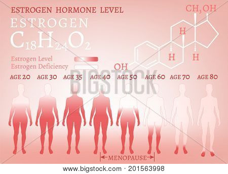 poster of Estrogen hormone level infographic. Beautiful medical vector illustration with oestrogen moleculaar formula in pink colours. Scientific, educational and popular-scientific concept.