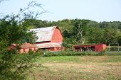 Barn And Outbuildings
