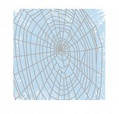 spider web over broken glass or frosted window