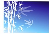 bamboo on blue vector