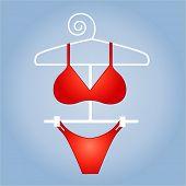 red hot bikini vector