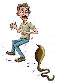 pic of king cobra  - Cartoon man threatened by cobra - JPG