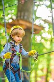 Every Childhood Matters. Kid Climbing Trees In Park. High Ropes Walk. Cute Child In Climbing Safety  poster