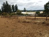 Animal Enclosure On Farm With Dirt And Poop poster