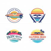 Set Logo Designs, Owl Surfing Logo Design Inspiration, With A Sunset Beach In The Surf Board poster