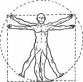 Da Vinci man sketch