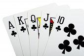 Royal Flush Baptize For Poker Closeup