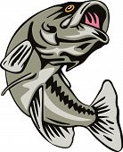 stock photo of bass fish  - vector art of a largemouth bass jumping - JPG