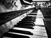 Black And White Photo Of The Keys Of An Old Broken Street Grand Piano. Tragic Photo With The Mood Of poster