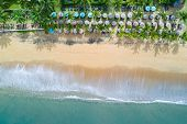 Aerial View Of Resort With Coconut Trees, Umbrellas And Deck Chairs On The Beach. Ocean Wave Reachin poster