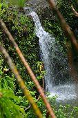Bamboo Falls