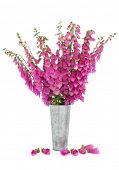 Foxglove flower arrangement in a distressed aluminum vase with scattered petals isolated over white