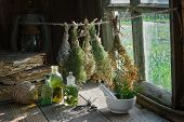 Tincture Or Infusion Bottles, Old Books, Mortar And Hanging Bunches Of Dry Medicinal Herbs. Herbal M poster