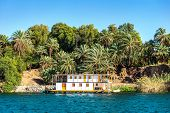 Boat Moored On A Coastline Of River Nile And Green Palm Trees poster