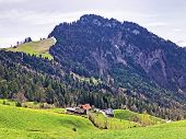 The Forested Alpine Peak Of The  Gersauerstock Or Vitznauerstock Peak On Rigi Mountain - Cantons Of  poster