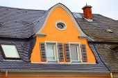Historic Roof