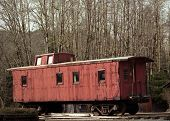 stock photo of caboose  - Old no longer used caboose in front of grove of deciduous trees.