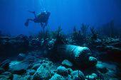 Blue Sea Diver