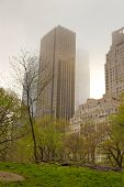 Fog Over Central Park, New York