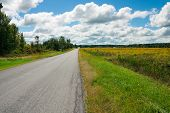 Country road in upstate New York