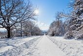 Deserted straight rural tree lined road covered in heavy winter snow with a section cleared down the