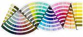 Pantone Color Palette - Background