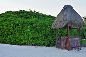 image of canopy roof  - Small wooden arbor with a straw roof on the sandy coast and green tropical thickets - JPG