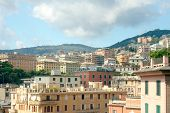 picture of negro  - View of Genoa from viewpoint of Villetta Di Negro
