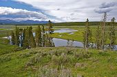 Yellowstone Park River