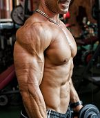 Torso Of Muscular Bodybuilder Working Out In Gym