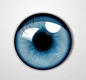 Vector oog