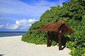 pic of dhoni  - Tropical beach on Maldives in the Indian Ocean - JPG