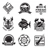 picture of squid  - set of nine monochrome seafood icons - JPG